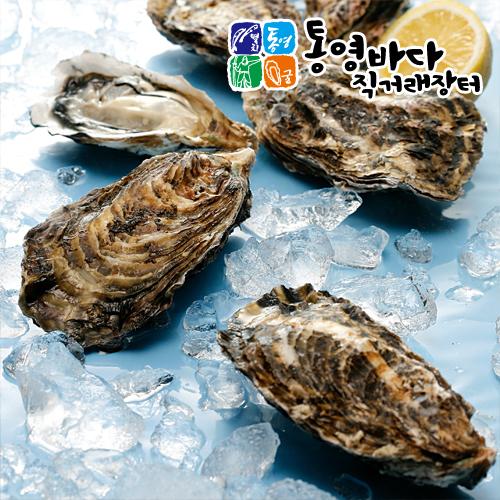 2017년 통영 햇 각굴(석화) 10kg