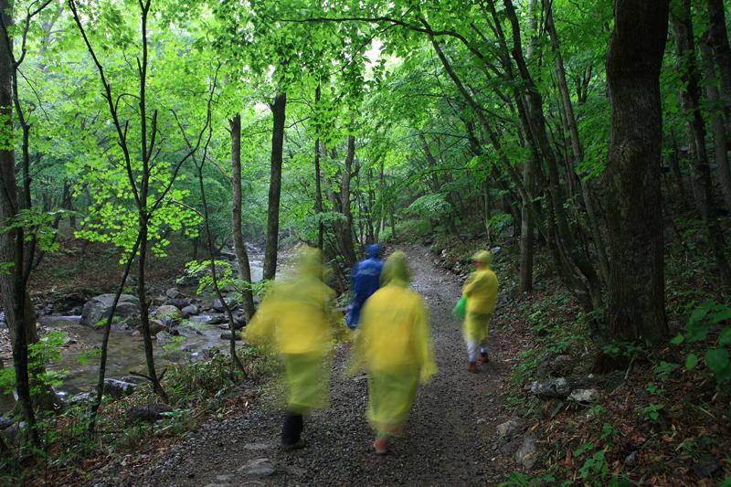 탐방객들_삼거리에서 강선마을로 향해 걷는 탐방객들. 강선마을까지는 이처럼 길과 계곡이 나란히 간다.